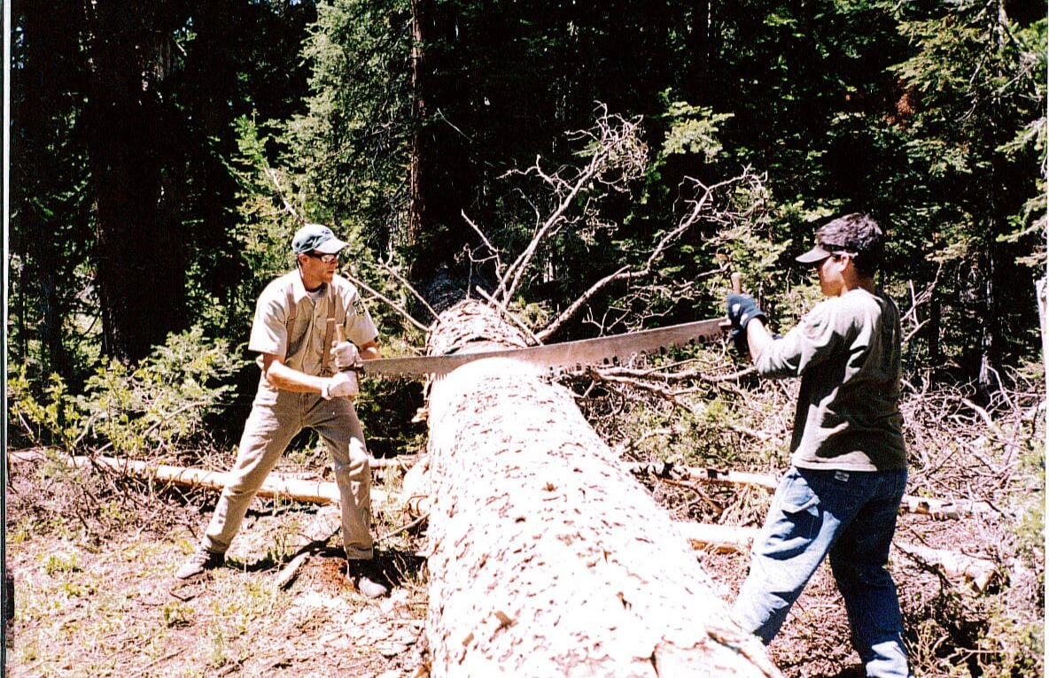 Arborist Consultations-Riviera Beach Tree Trimming and Tree Removal Services-We Offer Tree Trimming Services, Tree Removal, Tree Pruning, Tree Cutting, Residential and Commercial Tree Trimming Services, Storm Damage, Emergency Tree Removal, Land Clearing, Tree Companies, Tree Care Service, Stump Grinding, and we're the Best Tree Trimming Company Near You Guaranteed!