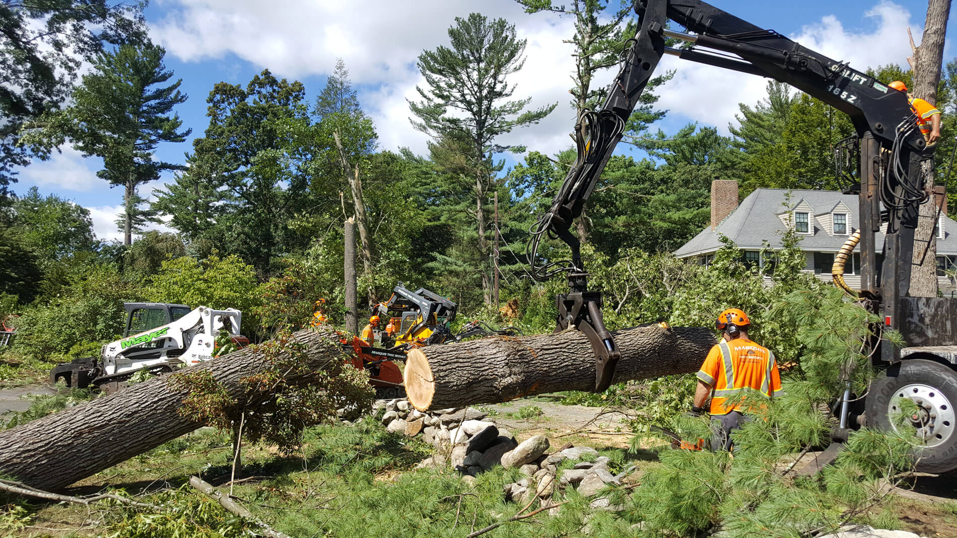 Commercial Tree Services-Riviera Beach Tree Trimming and Tree Removal Services-We Offer Tree Trimming Services, Tree Removal, Tree Pruning, Tree Cutting, Residential and Commercial Tree Trimming Services, Storm Damage, Emergency Tree Removal, Land Clearing, Tree Companies, Tree Care Service, Stump Grinding, and we're the Best Tree Trimming Company Near You Guaranteed!