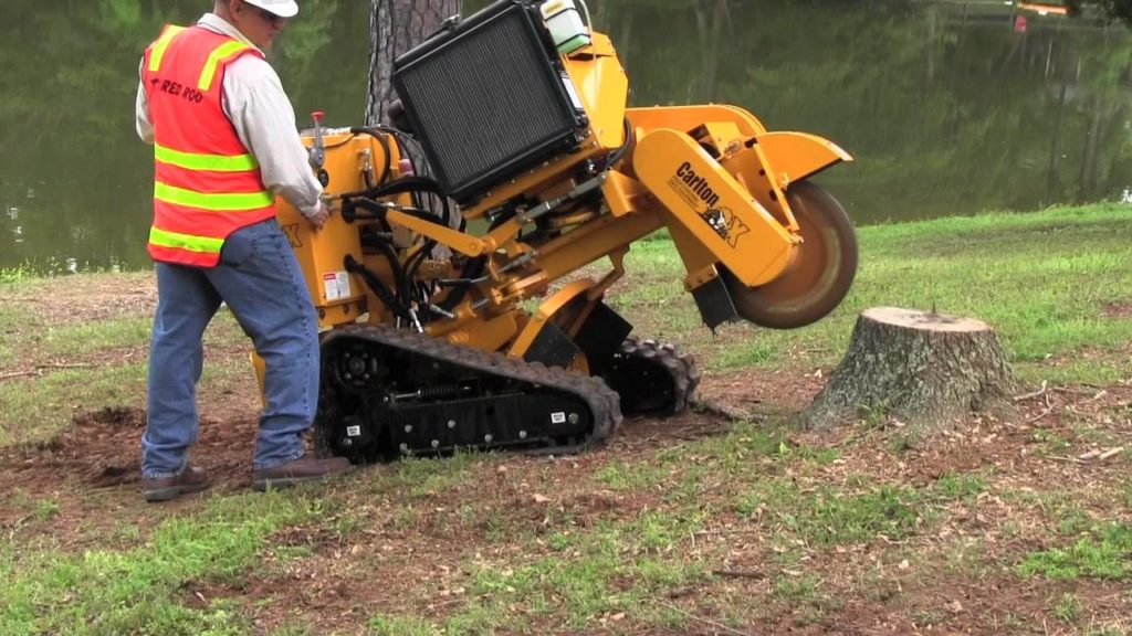Stump Grinding-Riviera Beach Tree Trimming and Tree Removal Services-We Offer Tree Trimming Services, Tree Removal, Tree Pruning, Tree Cutting, Residential and Commercial Tree Trimming Services, Storm Damage, Emergency Tree Removal, Land Clearing, Tree Companies, Tree Care Service, Stump Grinding, and we're the Best Tree Trimming Company Near You Guaranteed!