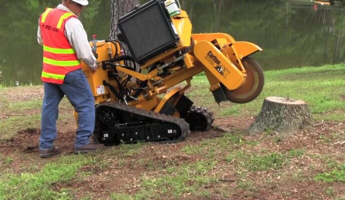 Stump Grinding & Removal-Riviera Beach Tree Trimming and Tree Removal Services-We Offer Tree Trimming Services, Tree Removal, Tree Pruning, Tree Cutting, Residential and Commercial Tree Trimming Services, Storm Damage, Emergency Tree Removal, Land Clearing, Tree Companies, Tree Care Service, Stump Grinding, and we're the Best Tree Trimming Company Near You Guaranteed!
